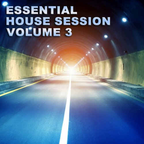 Essential House Session Vol 3 (2012)