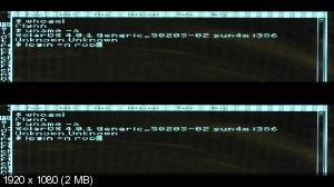 Трон: Наследие 3D / TRON 3D   Вертикальная анаморфная стереопара