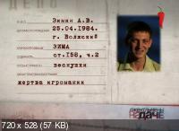 Джентльмены на даче [1-2 Сезон] / Джентльмени на дачі (2011-2012) SATRip