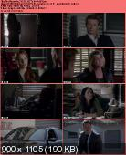 The Mentalist [S05E04] HDTV.XviD-AFG