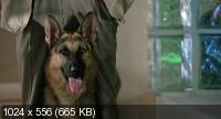 К-9: Собачья работа / K-9 (1989) HDTVRip-AVC